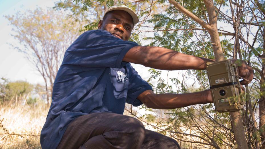 KAZA Artenschutz